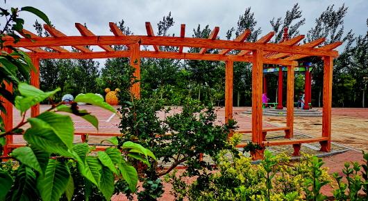 20平小花园设计实景图